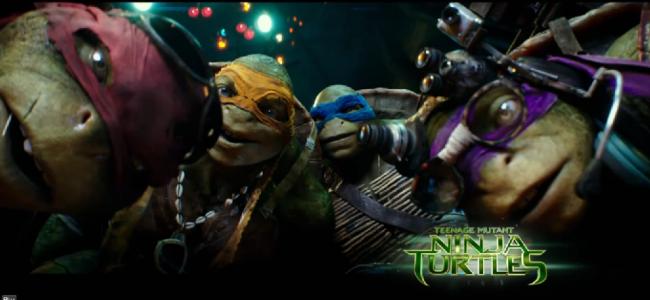 Turtles Goofy Banner